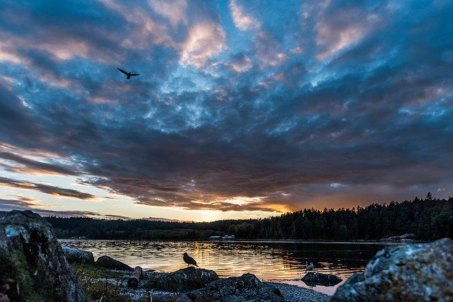 Top-10-Best-Places-To-Live-In-British-Columbia,-Canada-2020